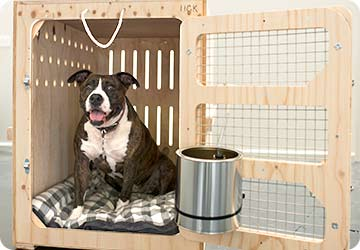 836af0f3ce Inside your pets travelling crate we will provide newspaper and stay dry  matting. If you have given our driver a special blanket or bedding for your  pet, ...